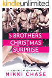 Five Brothers' Christmas Surprise: A Reverse Harem Romance