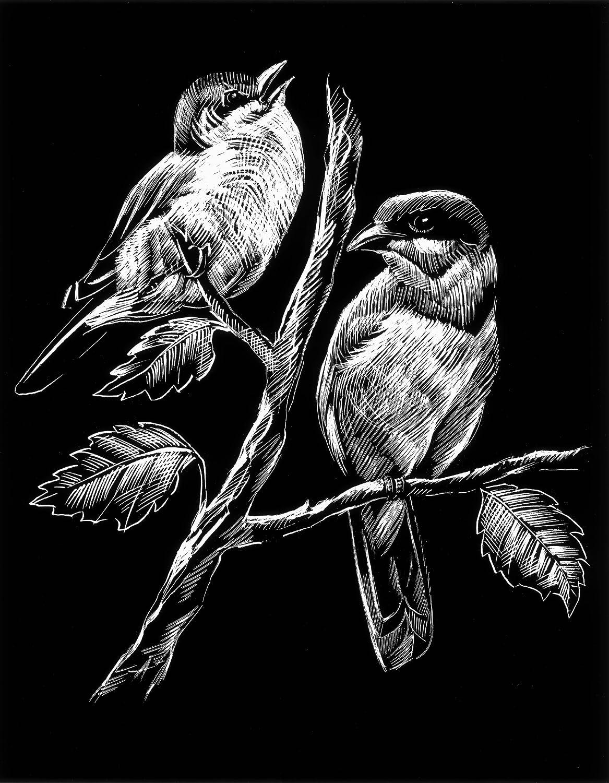 WASO-Hobby - 4er Scrapy Kratzbilder Set - Vogelmotive / Silber *Groß*