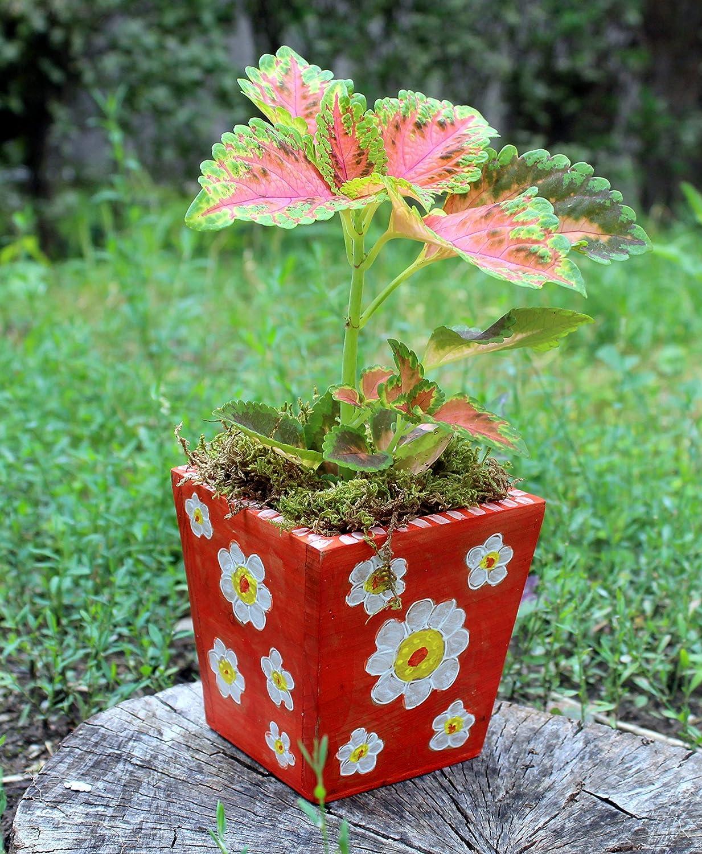 Pottery Planter Ceramic Planter Handmade Vintage Flower Holder Hand Painted Flower Pot