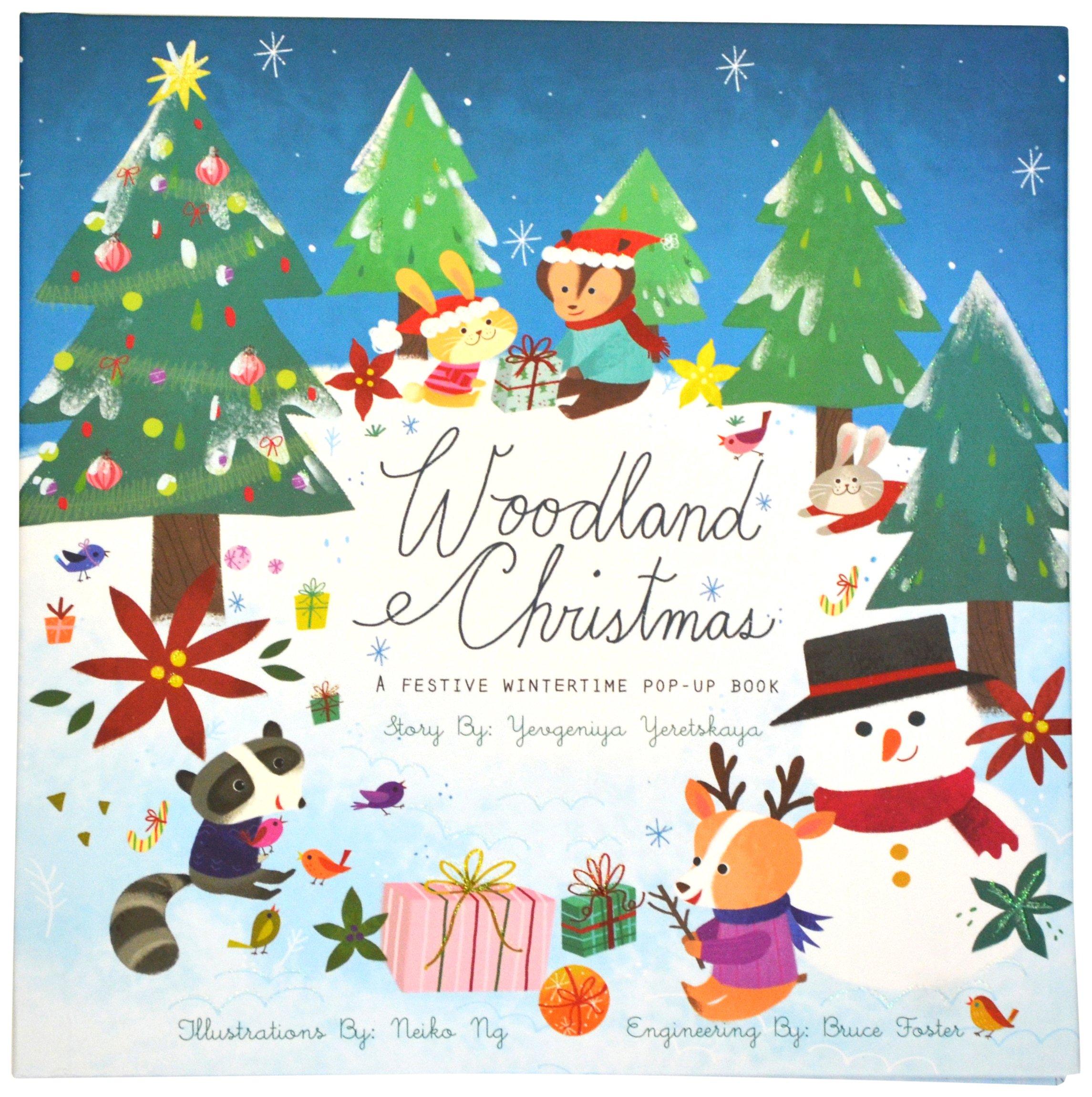 woodland christmas a festive wintertime pop up book yevgeniya yeretskaya neiko ng 9781605809540 amazoncom books - Woodland Christmas