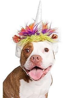 89ca0ef5958 Amazon.com   Pet Krewe Lion Mane for Dog -Lion Mane Dog Costume by ...