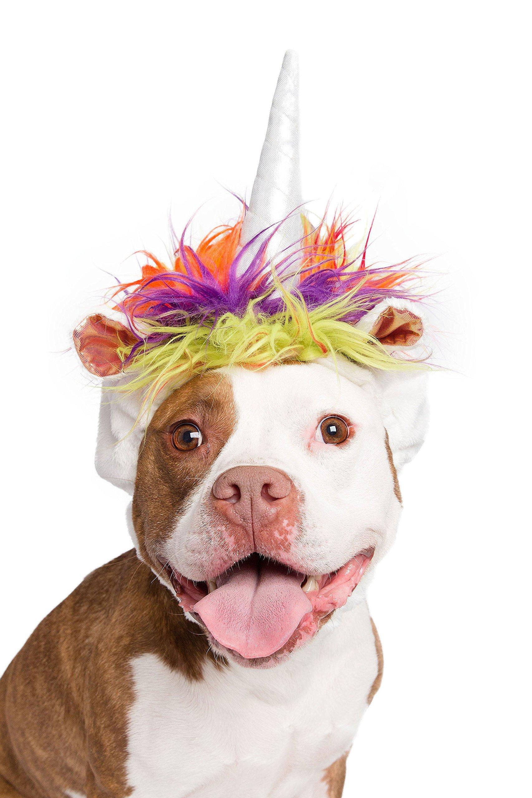 Pet Krewe PK00203 Unicorn Costume for Medium & Big Dogs