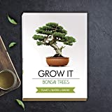Gift Republic Grow It - Set per la Coltivazione di Un Albero Bonsai