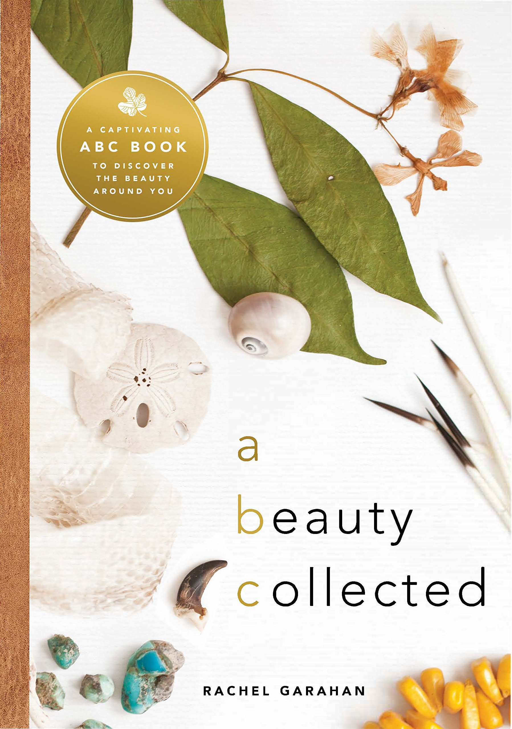 Download A Beauty Collected: A Captivating ABC Book to Discover the Beauty Around You PDF