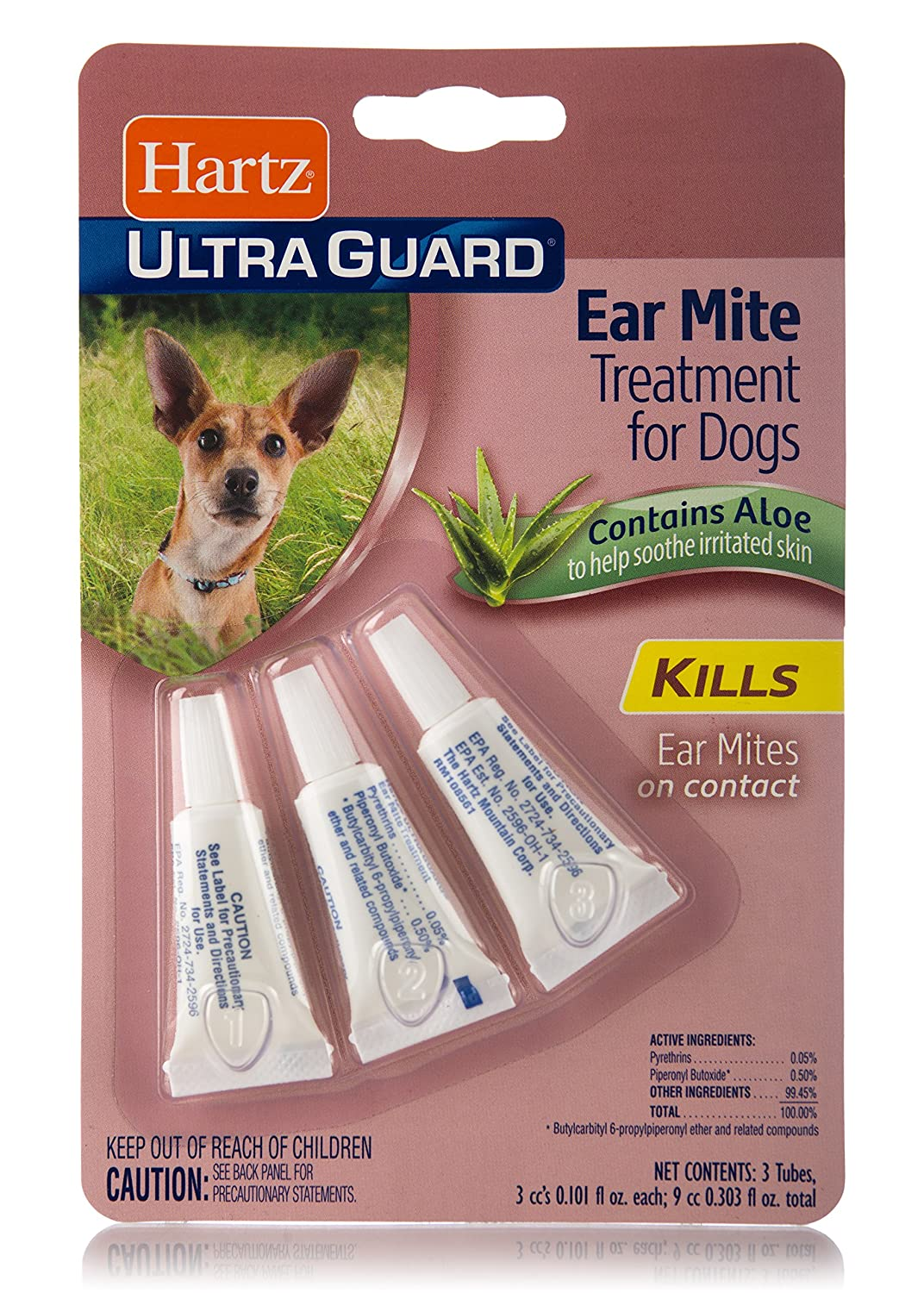 HOW TO GET RID OF EAR MITES IN DOGS FAST