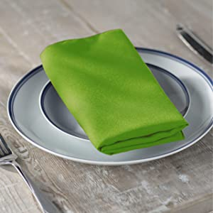 LA Linen 10-Pack Polyester Poplin Napkins 17 by 17-Inch, Lime