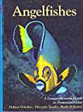 Angelfishes: A Comprehensive Guide to Pomacanthidae (Marine Fish Families)