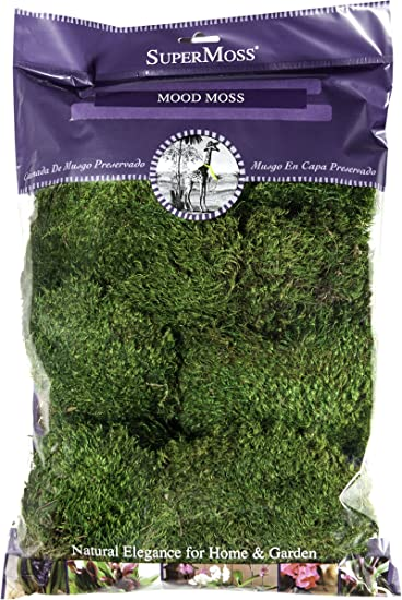 Natural Mood Moss 1.5 lb Bulk Box