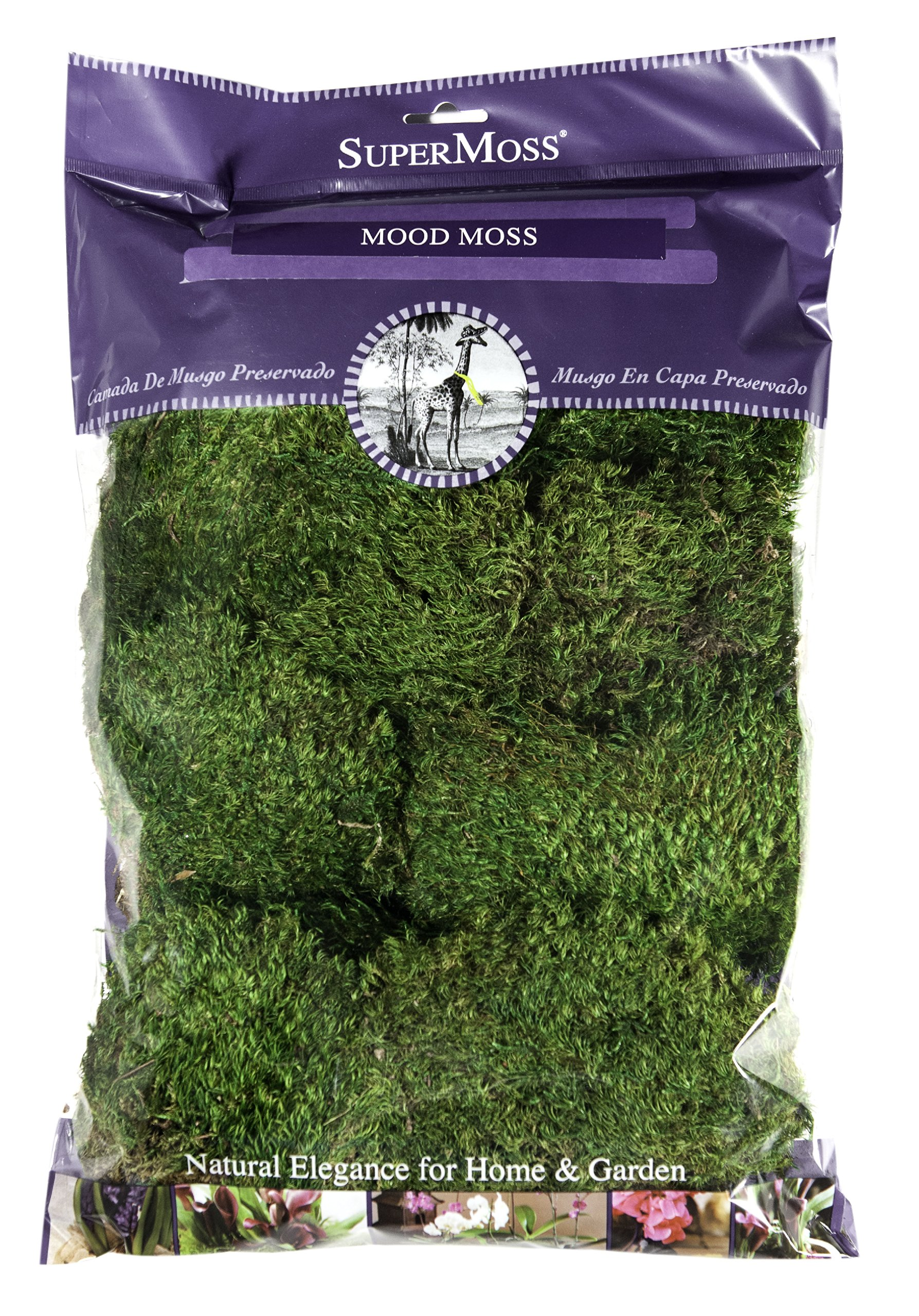 Supermoss Mood Moss Preserved Natural Green 1200cuin