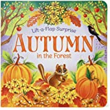 Autumn In The Forest Deluxe Lift-a-Flap & Pop-Up Seasons Board Book for Fall