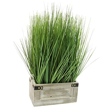 Admired By Nature GG7656-GREEN 19  Tall Artificial Desktop Potted Grass with Wooden Planter, Green,