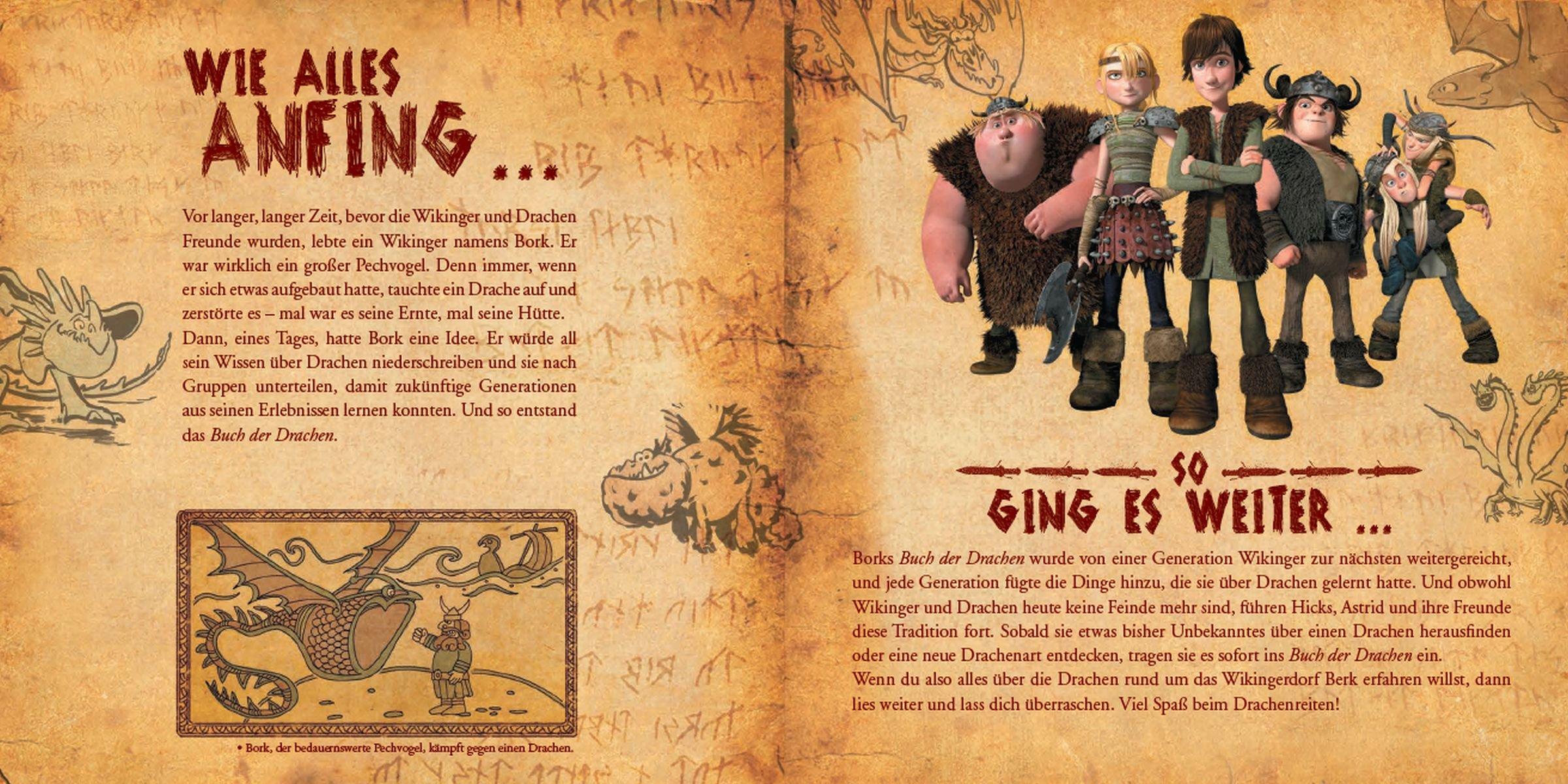 Dragons Das Buch Der Drachen Amazon De Hoffart Nicole Testa Maggie Bialk Andy Frawley Keih Buchmuller Rainer Bucher