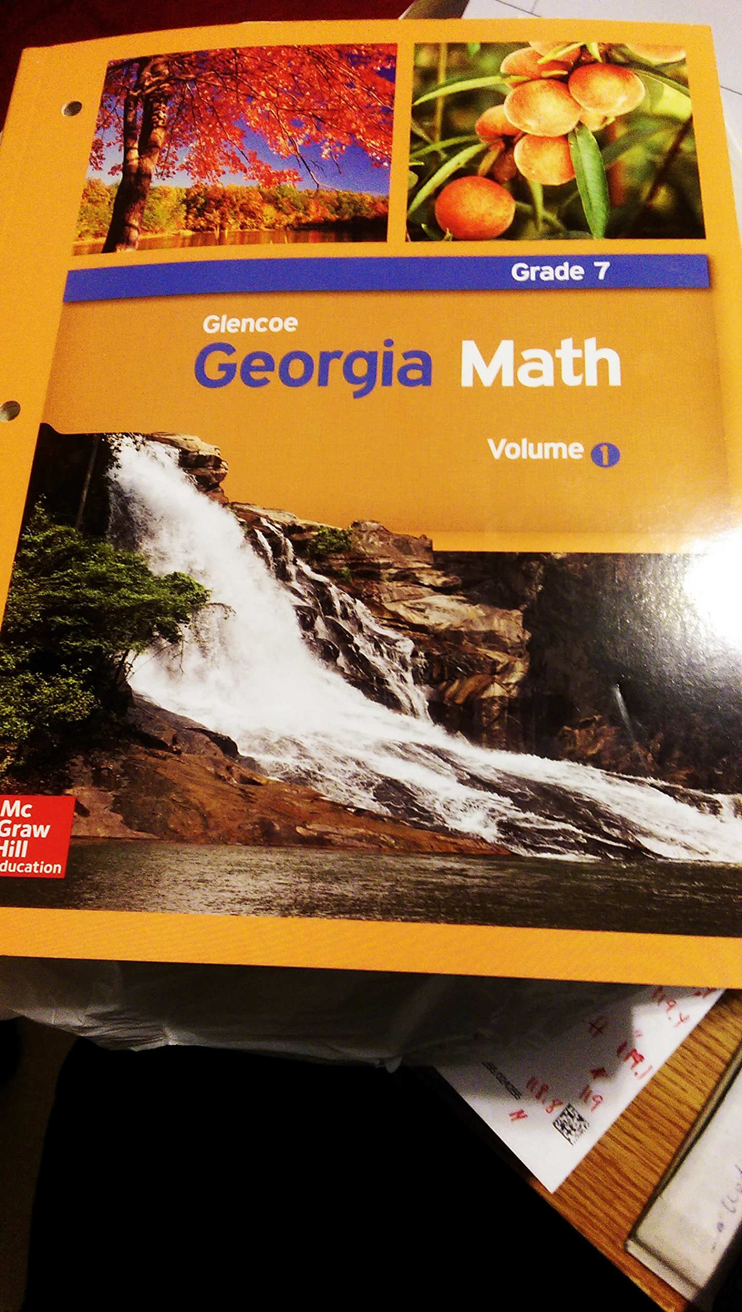 Glencoe Georgia Math, Grade 7, Volume 1: 9780076654857: Amazon com