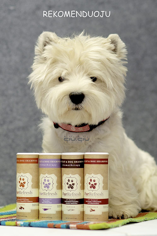 Lickable, culinarias Base, todos los Natural Seco Champú para gatos y perros con aromaterapia, vainilla aroma 4oz.: Amazon.es: Productos para mascotas