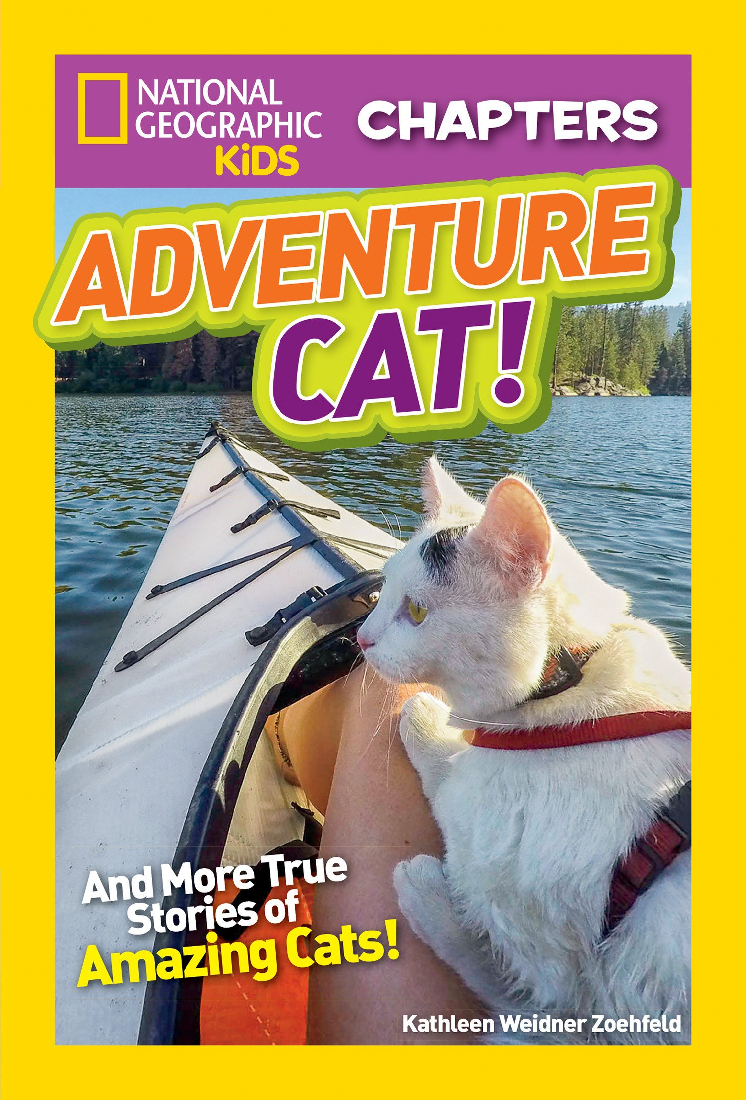 National Geographic Kids Chapters  Adventure Cat   NGK Chapters