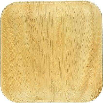Frondware 10\u0026quot; Palm Leaf Square Disposable Plates - Pack of 25 - Compostable - 100  sc 1 st  Amazon.com & Amazon.com: Frondware 10\