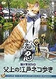 猫が見るDVD 父上の江戸ネコ歩き