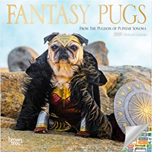 Fantasy Pugs Calendar 2021 Bundle - Deluxe 2021 Pugs Mini Calendar with Over 100 Calendar Stickers (Dog Lovers Gifts, Office Supplies)