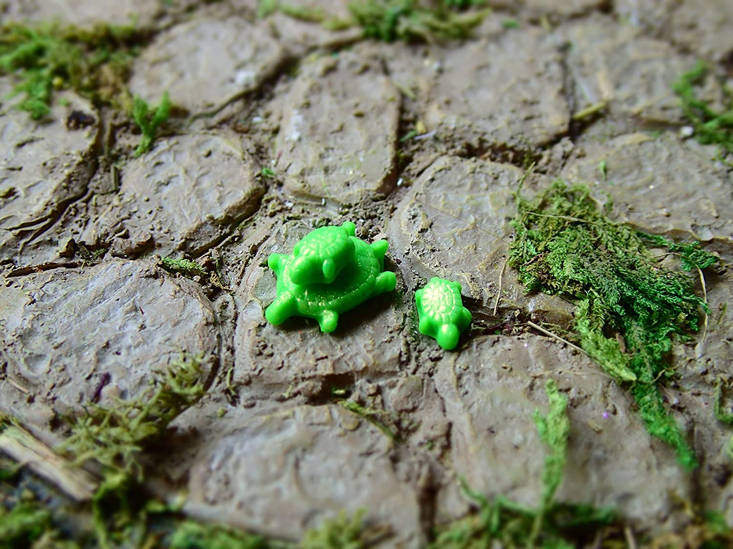 Tiny Turtles for Miniature Fairy Gardens or Micro Gardens! Fairy Garden Animals, Supplies, Decorations, and Accessories