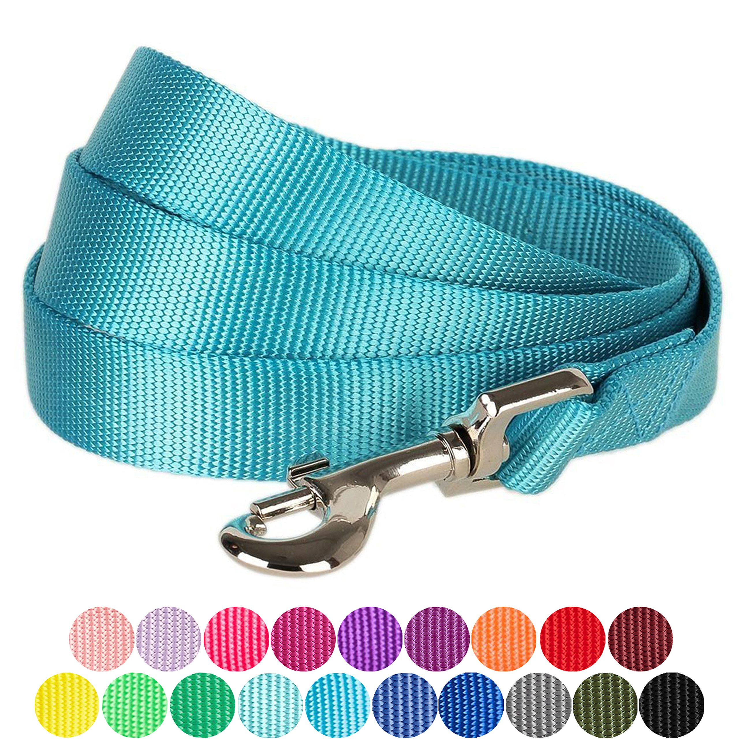 Blueberry Pet 19 Colors Durable Classic Dog Leash 5 ft x 5/8'', Medium Turquoise, Small, Basic Nylon Leashes for Dogs