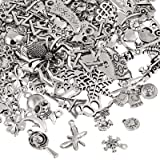 Naler 120pcs Mixed Styles Retro Silver Pendant Charm for DIY Jewellery Making, Keyring Bracelet, Necklace, Earring, Jewellery Finding Craft Decoration Accessories