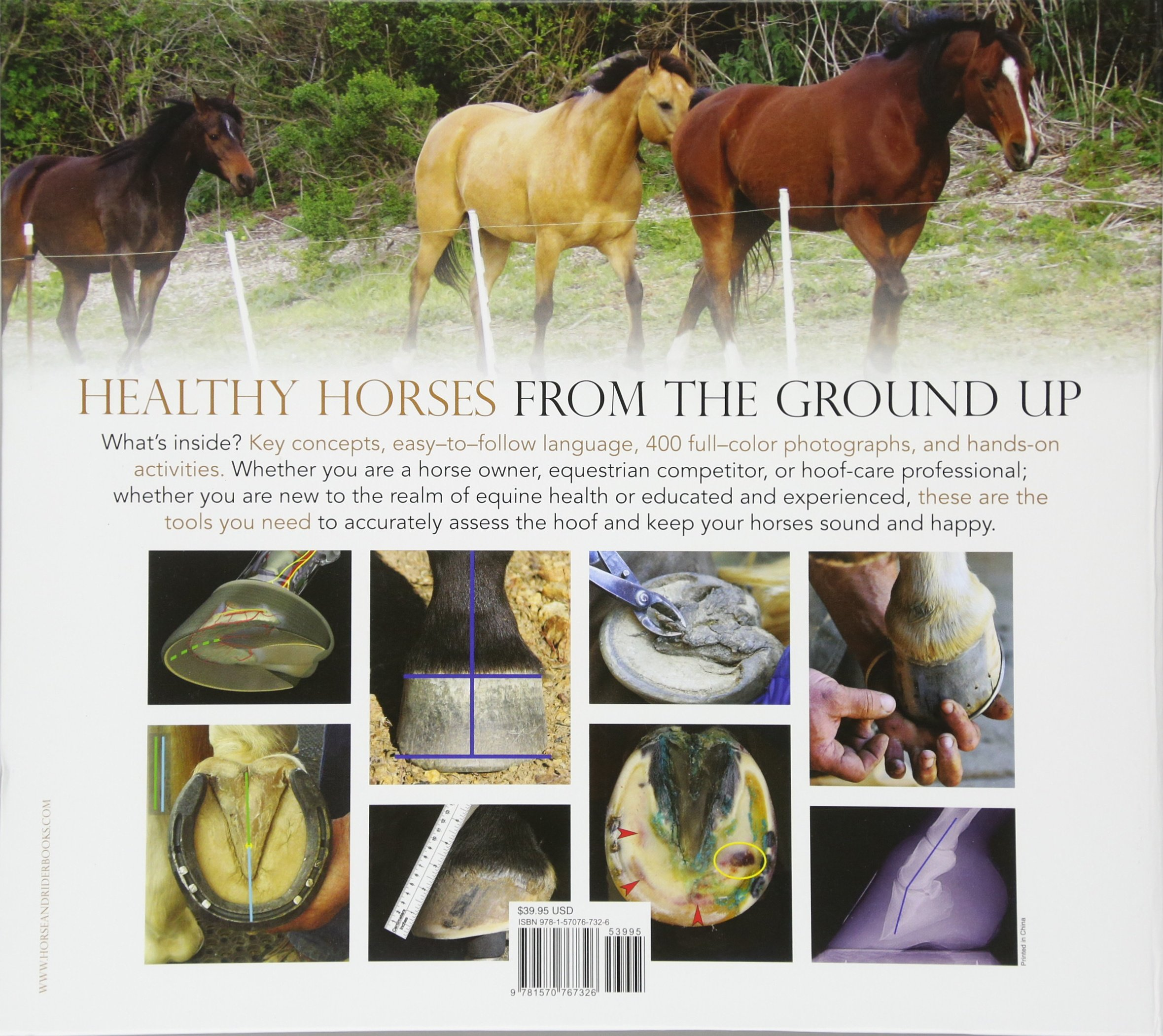The Essential Hoof Book: The Complete Modern Guide to Horse Feet ...