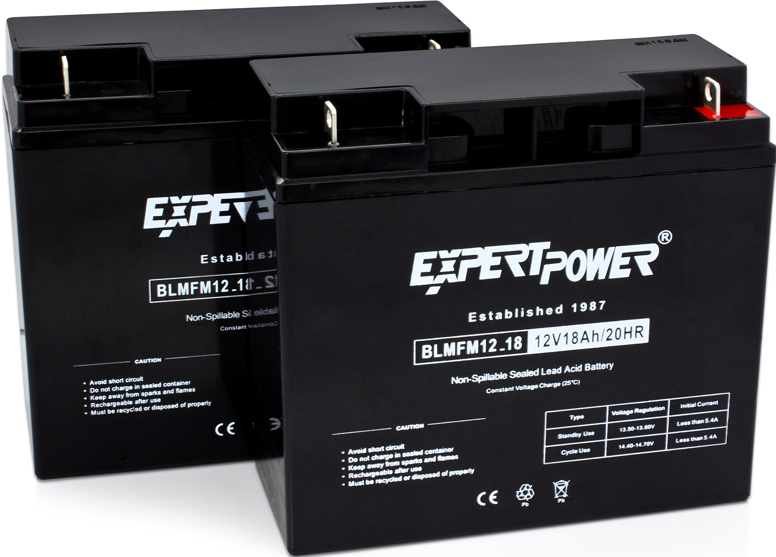 ExpertPower EXP12180-2 lead_acid_battery, 2 Pack by ExpertPower
