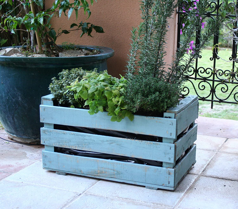 Caja de fruta antigua, jardinera de madera 50x30x27 cm VINTAGEBOX, pintada verde mint: Amazon.es: Jardín