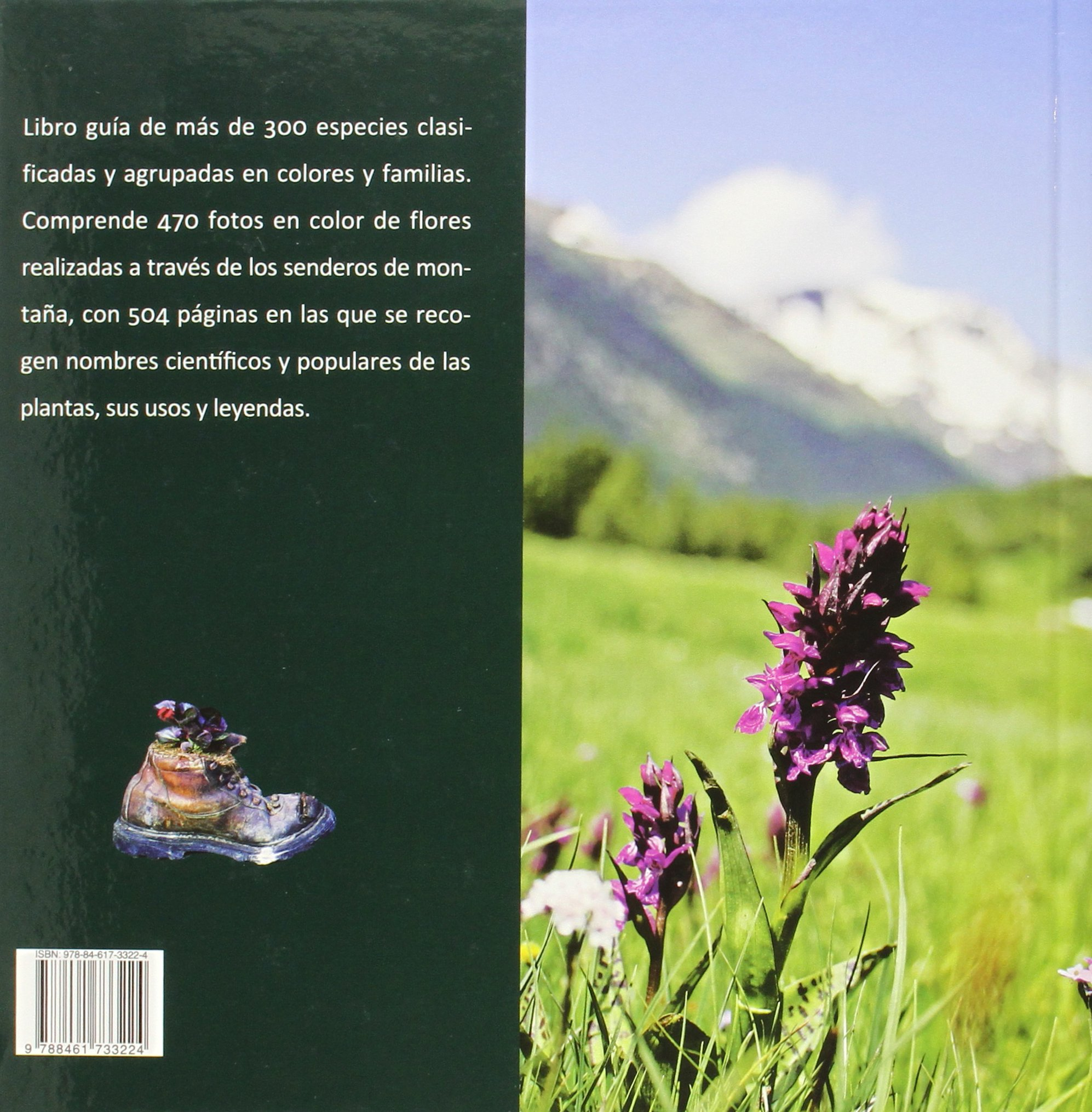 Flores De Montaña. Senderos Del Color: Amazon.es: David Hernandez ...