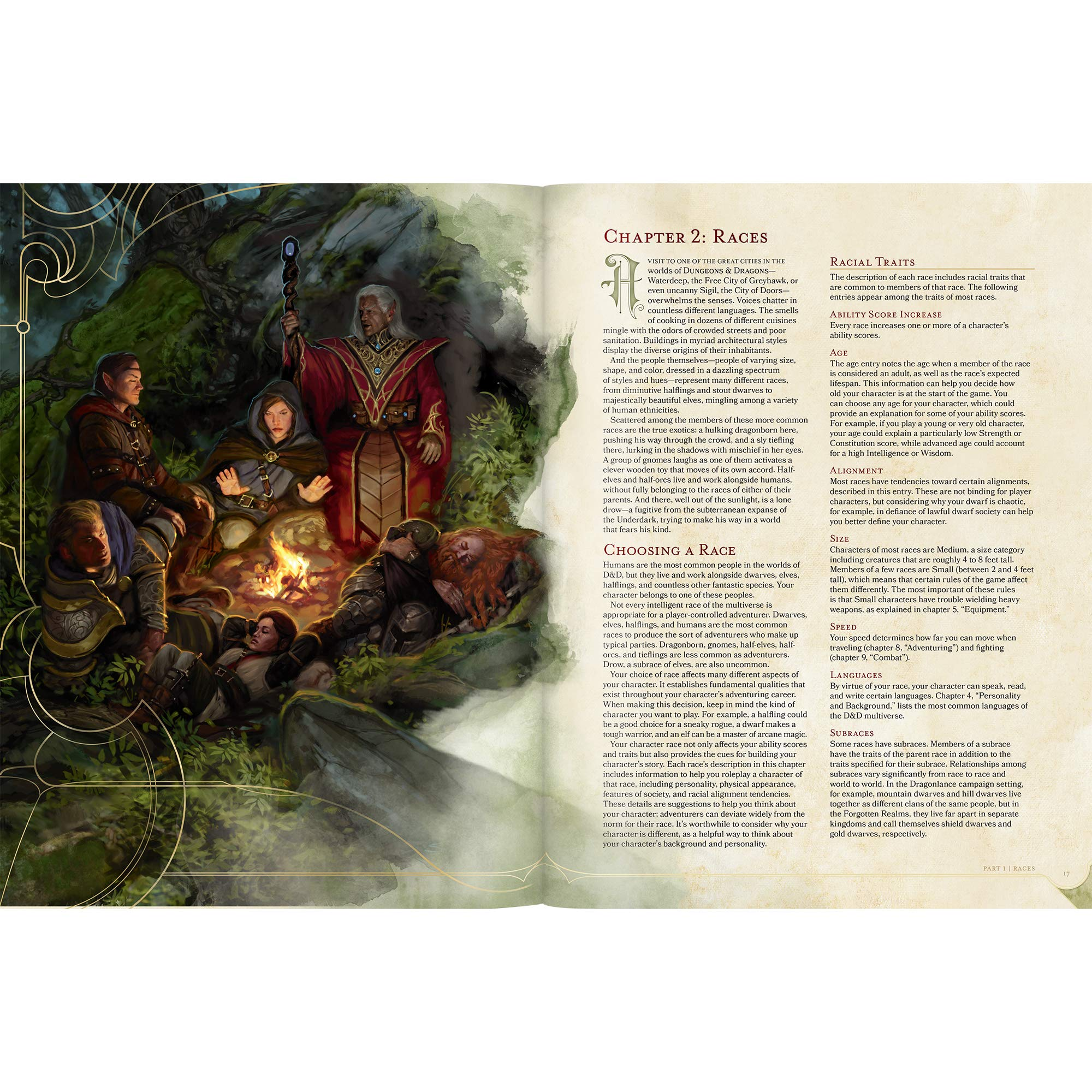 Players Handbook Dungeons Dragons Wizards Rpg Team