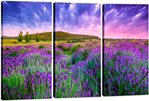 Canvas Wall Art Decor - 12x24 3 Piece Set (Total 24x36 inch) - Purple Flower Field - Decorative & Modern Multi Panel Split Canvas Prints for Dining & Living Room, Kitchen, Bedroom, Bathroom & Office