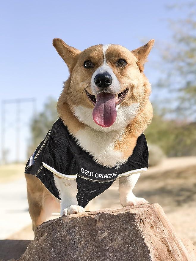 d43e4aa8d Amazon.com : NFL NEW ORLEANS SAINTS DOG Jersey, Small : Sports Fan Jerseys  : Pet Supplies