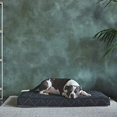 Brentwood Home Griffith Orthopedic Dog Bed