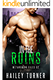 In the Ruins (Metahuman Files Book 2)