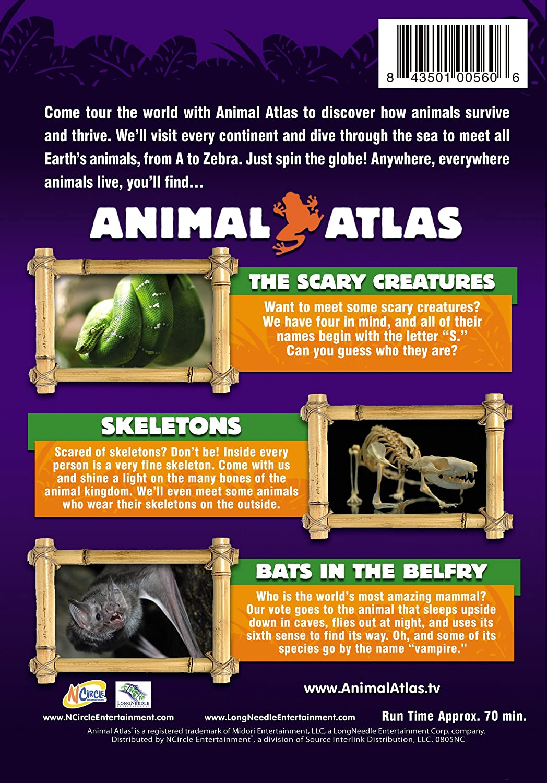 Amazon com: Animal Atlas: Creepy Creatures: Animals!, Animal Atlas