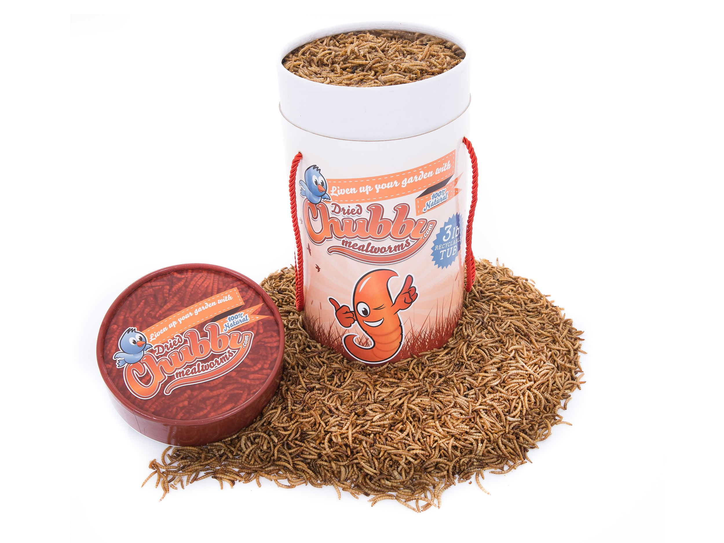 Chubby Mealworms Bulk Dried Mealworms for Wild Birds, Chickens etc. (3lb Tub) by Chubby Mealworms