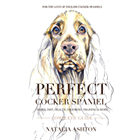 Perfect cocker spaniel: complete guide. Breed, diet, health, grooming, training and more.