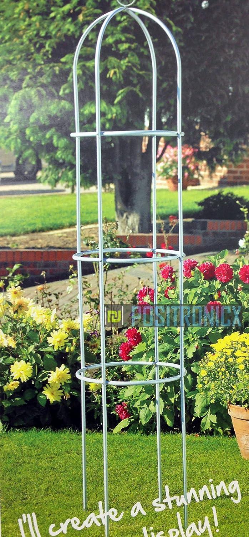dy&dx Obelisco de Efecto Plateado para Plantas trepadoras y Rosas ...