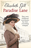 Paradise Lane: They Were Childhood Sweethearts, But Then Everything Changed... (Durham City Series)