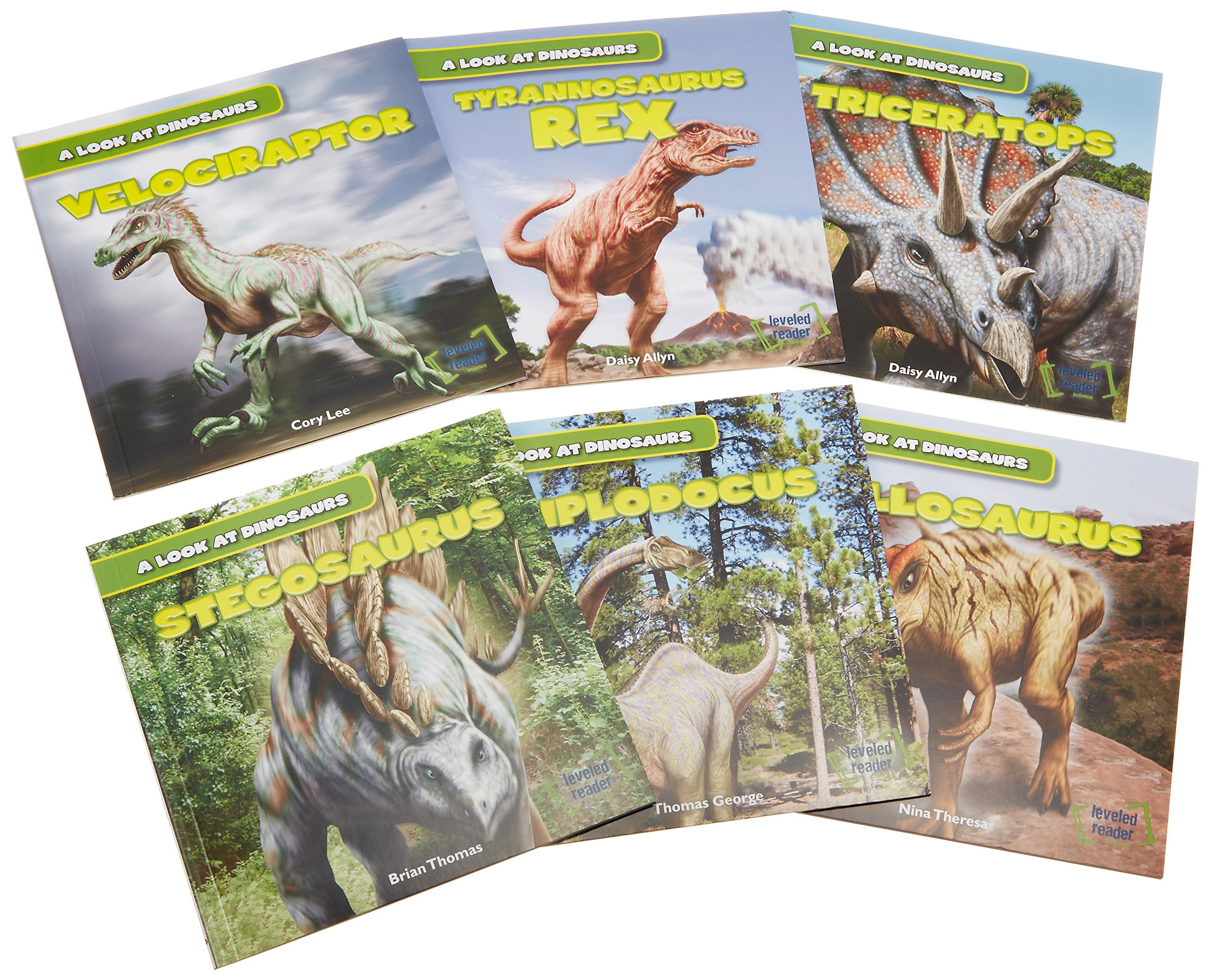 Read Online A Look at Dinosaurs PDF