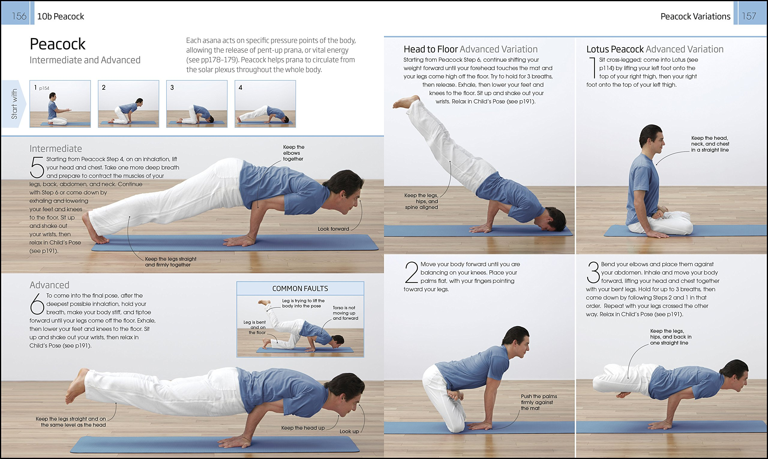 Yoga: Your Home Practice Companion: A Complete Practice and