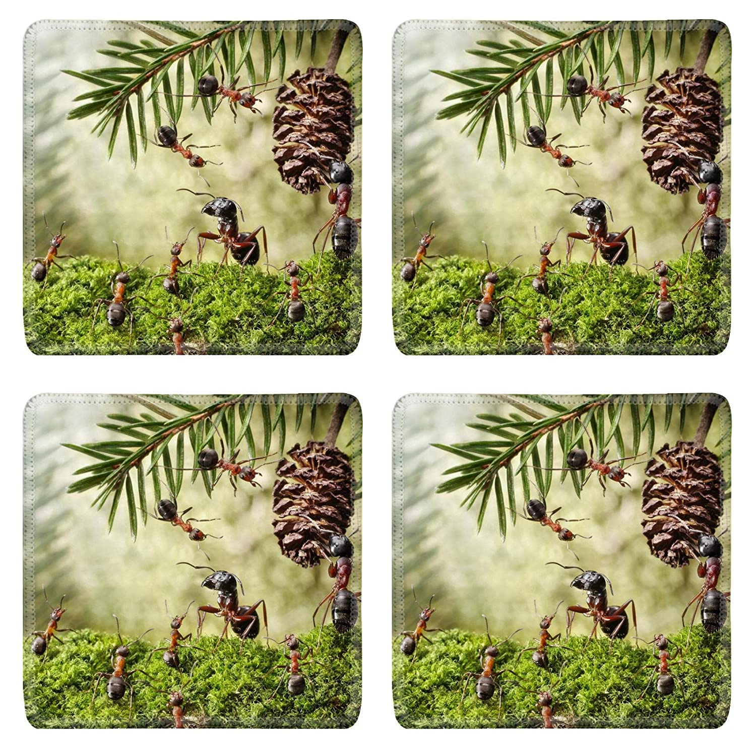 MSD Square Coasters Non-Slip Natural Rubber Desk Coasters design: 14565741 camponotus quarrel with formica for cone ant stories