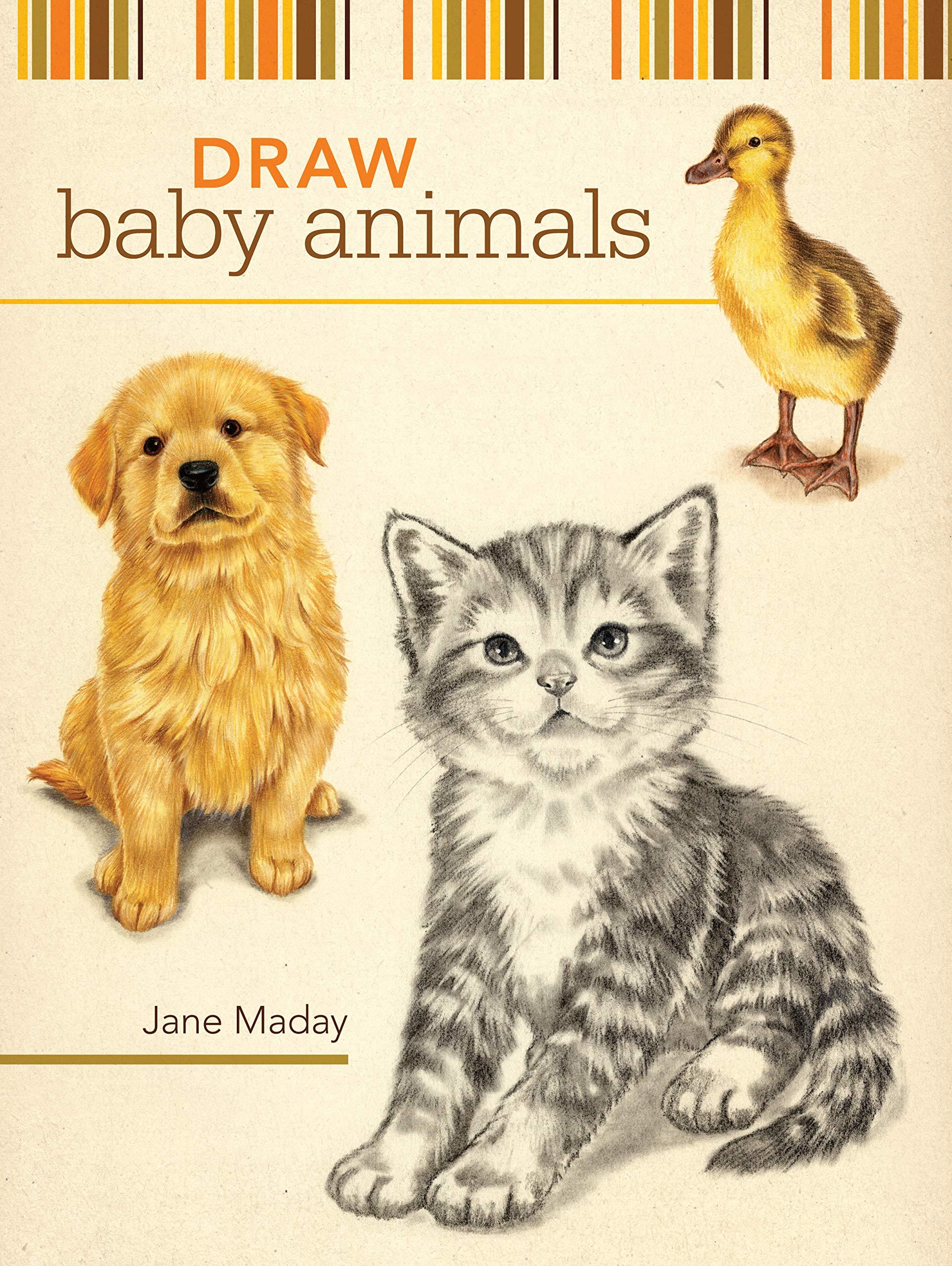 Draw Baby Animals Jane Maday 9781600611957 Amazon Com Books