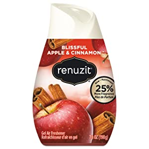 Renuzit, Apple & Cinnamon, 7 Ounce (Pack of 12)