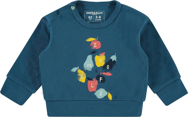 Imps/&Elfs Baby-Jungen B Regular Sweater Ls Boksburg Sweatshirt