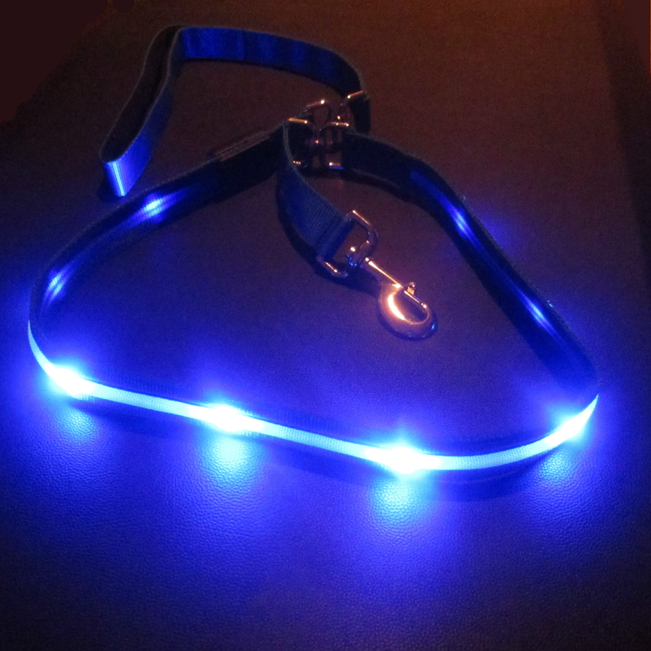 Blazin' Safety LED Dog Leash - USB Rechargeable Flashing Light, 6 Ft, Water Resistant - Avoid Danger - Blue by Blazin' Bison