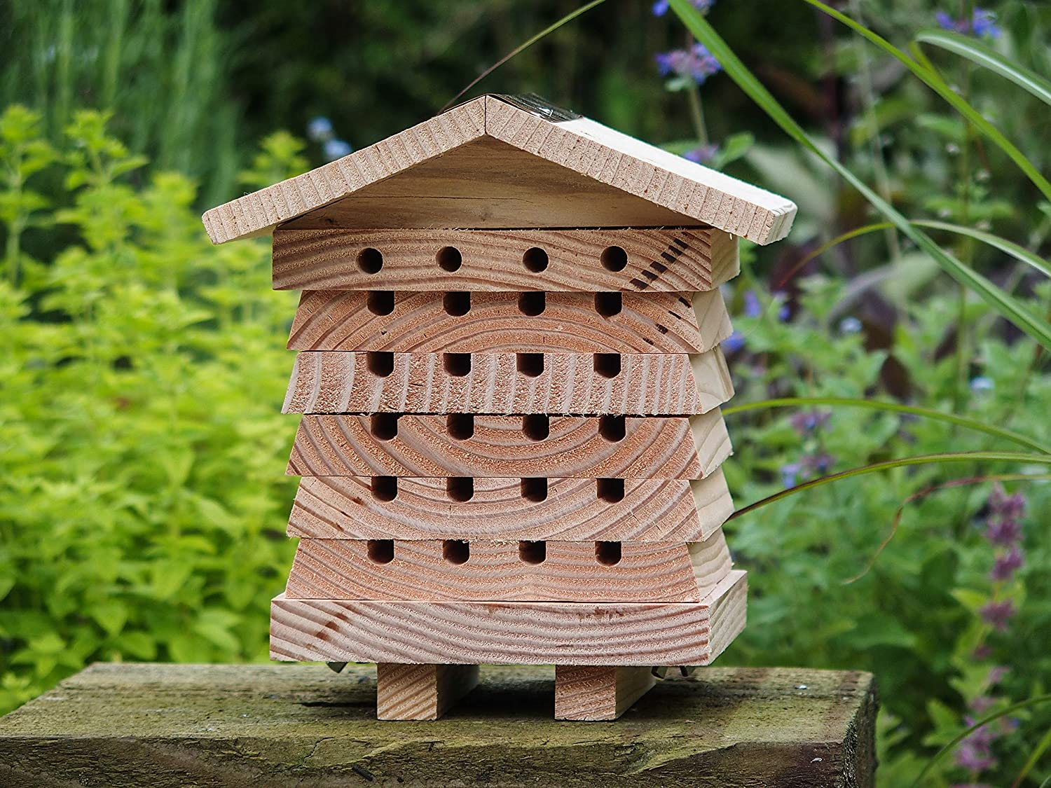 Leisure Traders Durable Solitary Bee Hive in FSC Timber with Stacking Viewing Trays
