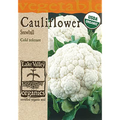 Lake Valley 4056 Organic Cauliflower Snowball Seed Packet : Vegetable Plants : Garden & Outdoor