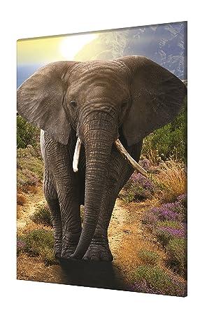 Homedeco 24 Wandbild Leinwand Elefant Hochformat Afrika