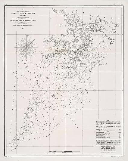 Amazon.com: Old Travel Map - Cedar Keys Florida- Duval 1889 - 23 x on